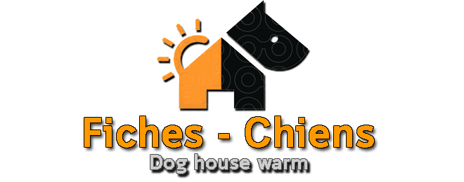 Fiches – Chiens Animal Clinic